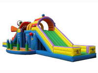 Inflatable Aqua Frog Slide with Bouncer Obstacle