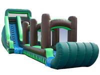 Inflatable Tropical Screamer Water Slide
