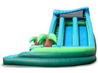 Inflatable Dual Lane Curvy Water Slide