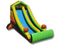 Inflatable Water Slide WS-158