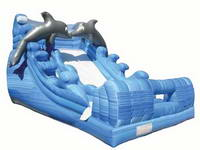 Inflatable Lovely Dolphin Water Slide