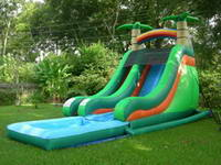 Tropical Super Splash Down Water Slide Perfect for Party