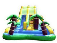 Custom Made Palm Trees Inflatable Water Combos for Rental