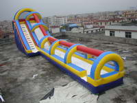 58ft Giant Inflatable Tropical Dual Water Slide for Amusement Park