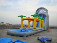 Roaring River Inflatable Water Slide