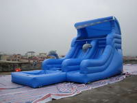 Durable Inflatable Dolphin Water Slide
