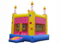 Inflatable Birthday Party Jumping Castle