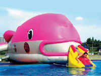 Custom Giant Inflatable Whale Water Slides