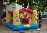 Jumping Castle Bouncer Kids Outdoor Backyard Party