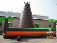 Inflatable Rock Climbing Wall  SPO-58-2