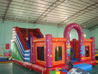 Hot Selling Inflatable Party Bounce House Slide Combo