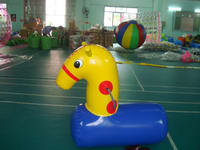 Team Games Pony Hops Inflatables for Hire