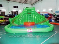 Commercial Use Inflatable Crocodile Water Slide