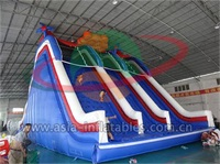 Giant Inflatable High Slide For Event