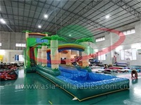 Palm Tree Inflatable Water Slide With Splash Pool