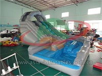 Inflatable Wild Rapids Water Slide