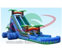 Wild Splash Inflatable Water Slide