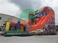 Giant Inflatable House Slide