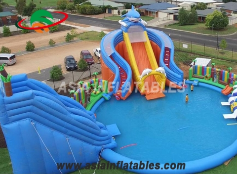Character Inflatable Water Park with Shark Slide
