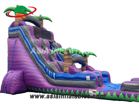 Purple Crush Inflatable Water Slide Rental